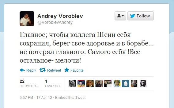vorobiev_shein.jpg