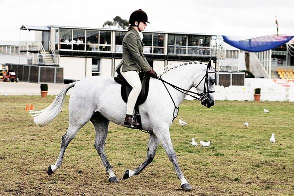 Horse_riding_in.jpg