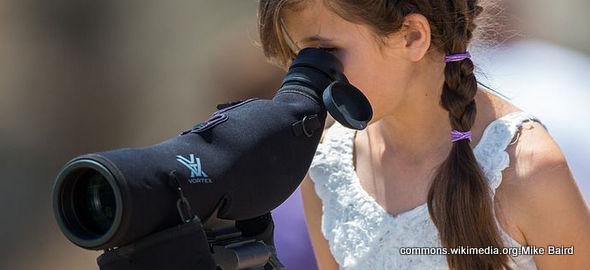 telescope590.jpg