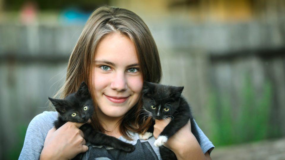 Работа мечты для красноярцев: сценарист для телесериалов иобниматель котиков
